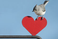 Bird With Heart Stock Photo