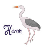 Bird heron vector illustration Royalty Free Stock Photography