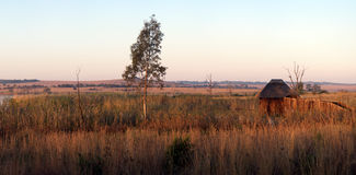 Bird Hide Panorama. Stock Photo