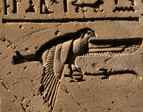 Bird hieroglyph 2. Bird hieroglyph at Efdu Temple stock images