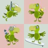 Bird on holiday Stock Photo