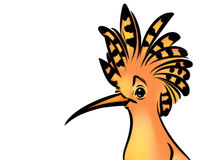 Bird hoopoe cartoon illustration Royalty Free Stock Photo