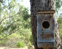 Bird house. Wooden bird house stock photos
