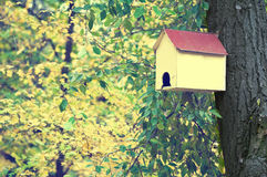 Bird house. With beautiful background with green and yellow leaves Stock Photo