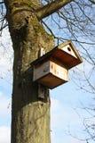 Bird house. Beautiful bird house affixed to a tree trunk stock photos