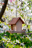 Bird house. In the spring garden royalty free stock photo