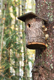 Bird House. Beautiful bird house affixed to a tree trunk Stock Image