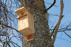 Bird house. On a Tree in a sunny spring day royalty free stock photos