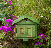 Bird house. Green bird house on the Bougainvillea royalty free stock image