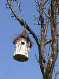 Bird house. On a tree. Handmade Royalty Free Stock Images