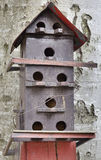 Bird house. On the beech tree stock images