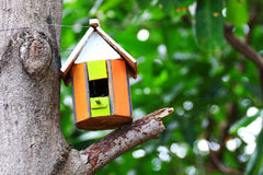 Bird house. Hanging from the tree Royalty Free Stock Image