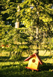 Bird house. In the forest stock images