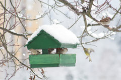 Bird House. Small bird house at winter time Royalty Free Stock Photos