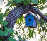 Free Bird House Royalty Free Stock Photos - 50686948