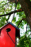 Bird house. Hanging in a tree Stock Photography