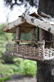 Bird House. Small bird house on a tree Royalty Free Stock Images