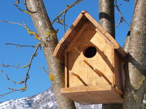 Bird House. On tree with blue sky and snowy mountains as background royalty free stock photography