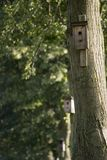 Bird house Royalty Free Stock Photography