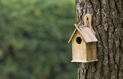Bird House. On a Pine Tree Royalty Free Stock Photography