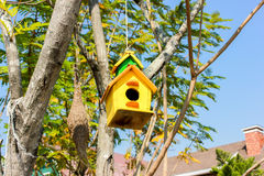 Bird house. Beautiful bird house of yellow color on the tree Stock Images