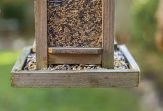Bird house with bird feed. Grains and cereal stock photo