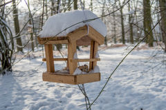 Bird house  - bird feeder Stock Image