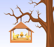 Bird house with birds are hung on branch Stock Photos