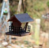 Bird House with Blue Jay Peeking around the corner royalty free stock photos