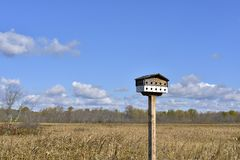 Bird house in blue sky Stock Image
