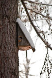 Bird house. Booth breeding on tree Royalty Free Stock Photo