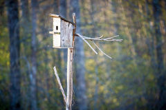 Bird house box. In early spring Stock Photos