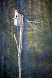 Bird house box. In early spring Royalty Free Stock Photo