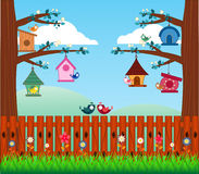 Bird House build a community of bird - full color Stock Photography