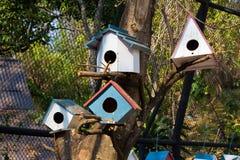 Bird house. Close up on Stock Photography