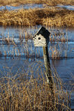 Bird House on a fence post.  Stock Photo