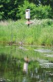 Bird House In The Field Royalty Free Stock Photography