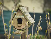Bird house and the first spring gentle leaves. Bird house and the first spring gentle leaves, buds and branches royalty free stock images