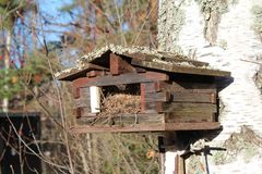 Bird house in forest autumn big tree Royalty Free Stock Photos