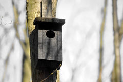 Bird house in the forest Stock Photos