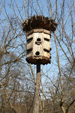 Bird house in the forests. And blue sky royalty free stock image