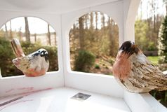 Bird House From Inside. Stock Images