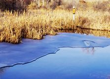 Bird house on frozen pond. Stock Image
