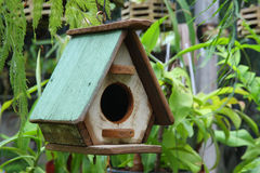 Bird house. In the garden Stock Photography