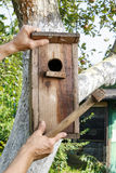 Bird house in the garden Royalty Free Stock Photos