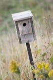 Bird House Royalty Free Stock Image