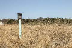 Bird House Stock Photography