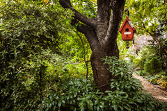 Bird house. Hanging in the park Stock Photography