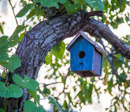 Bird house. Hanging in tree royalty free stock photos