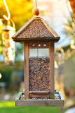 Bird house hanging. From the tree royalty free stock photo